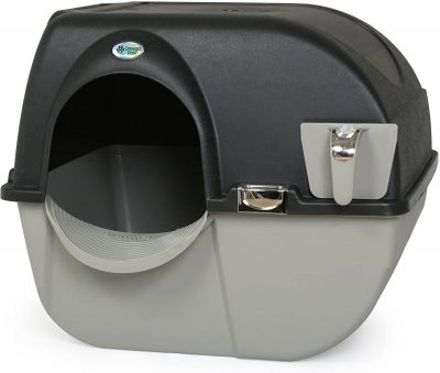 Automated cleaning cat litter box
