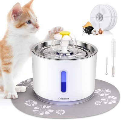 smart cat water fountain